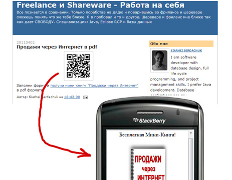 Mobile Marketing and Application of QR-Codes