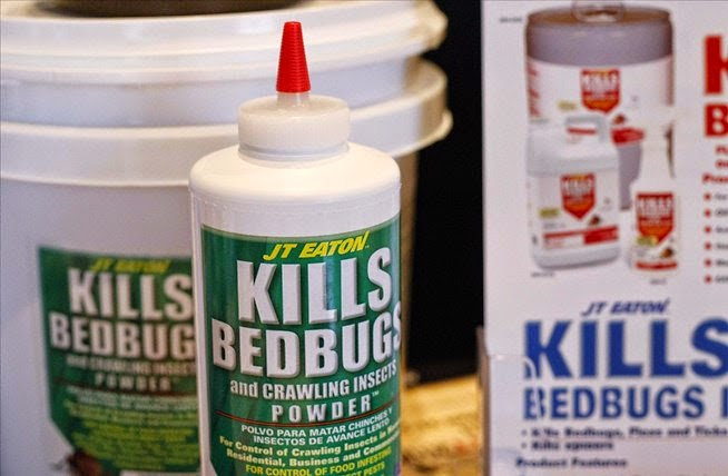 Bed Bugs Bites all over the Body Recognize and Treat!
