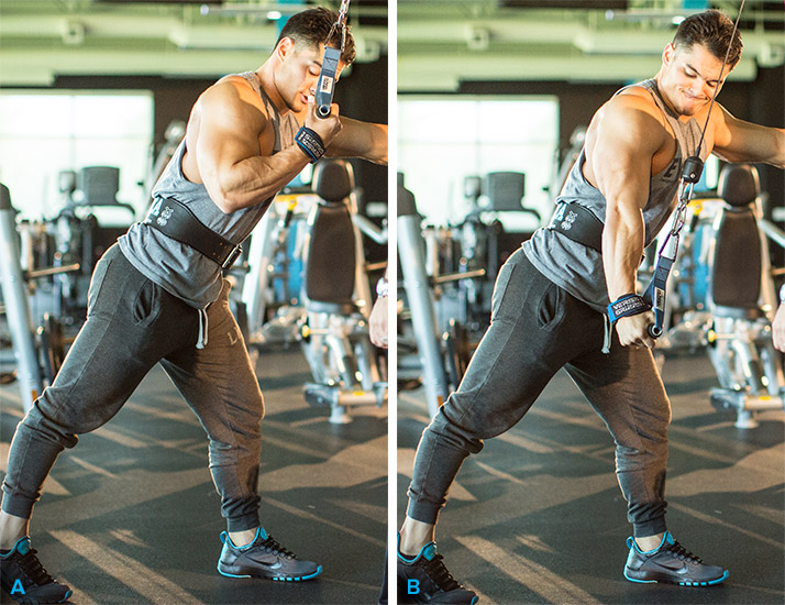 the best triceps